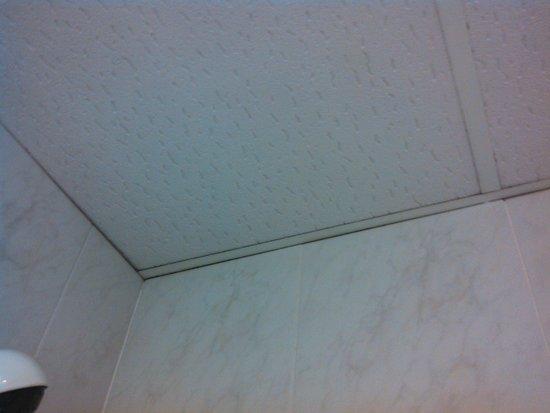 Ilusion Calma: moisissure dans le plafond