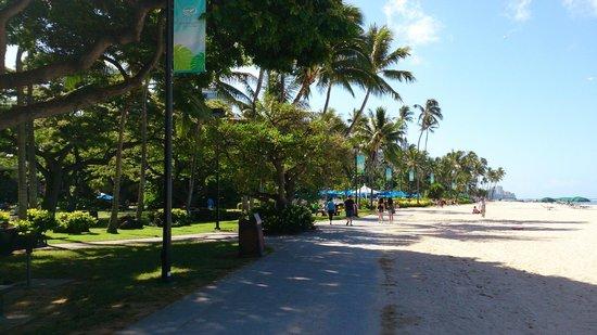 Fort DeRussy Beach Park: pista para caminhada