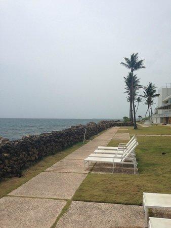 The Condado Plaza Hilton: Ocean view/pool view