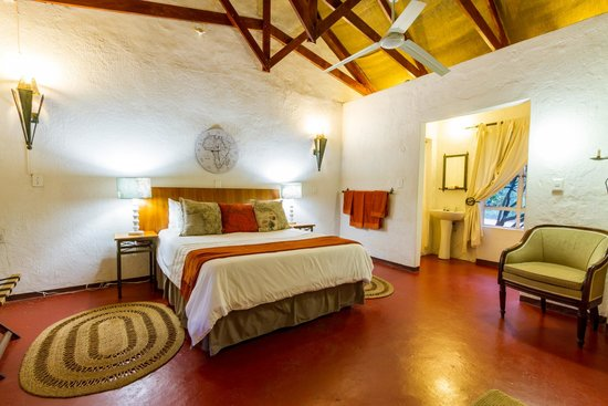 Gecko Lodge: Double room With Shower