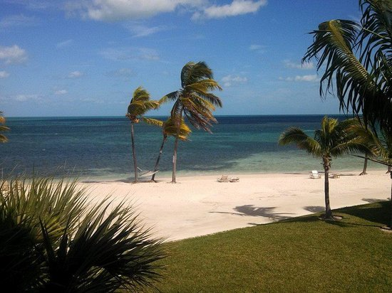 Old Bahama Bay: From our balcony
