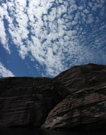 Hiking Trails in Bonaventure Island : .