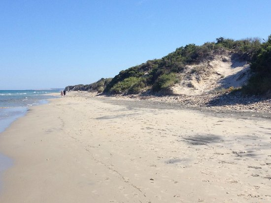 Salento Guesthouse B&B : Traumhafter 7 km langer Alimini Strand