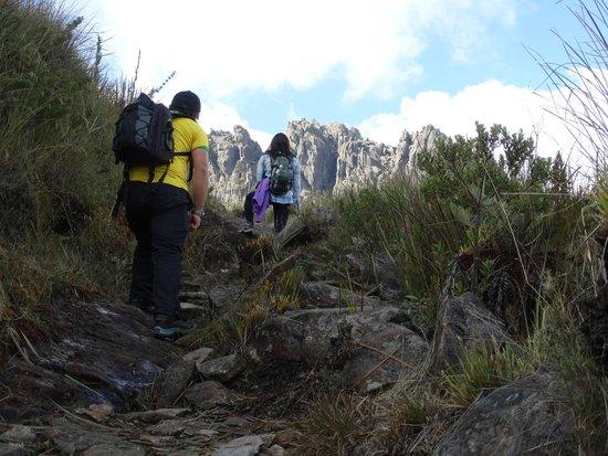 Parque Nacional do Itatiaia: Pq.Nacional do Itatiaia - Parte Alta