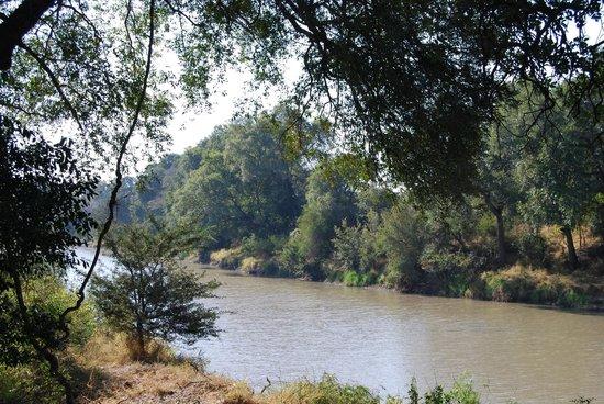 Hamiltons Tented Safari Camp: river