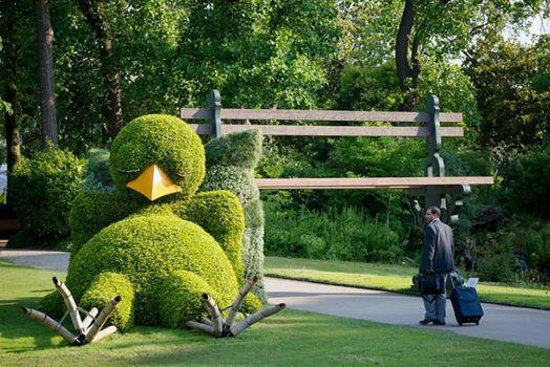 le poussin nantais au jardin des plantes photo de jardin des plantes nantes tripadvisor. Black Bedroom Furniture Sets. Home Design Ideas