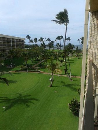 Maui Sunset Condos: Jardines