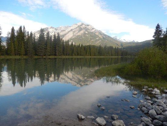 Rocky Mountain B&B: Banff