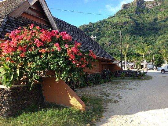 Bloody Mary's : Полинезия