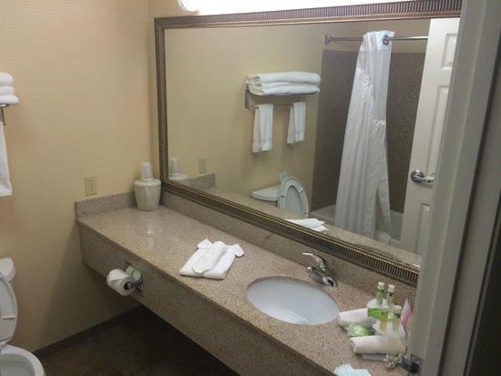 Holiday Inn Express Fort Collins: bathroom