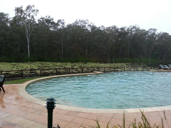 Cedar Lake Country Resort: Pool side view