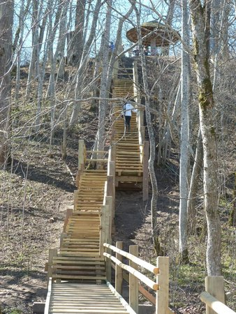 Turaida Castle : лестница в долине реки Гауя
