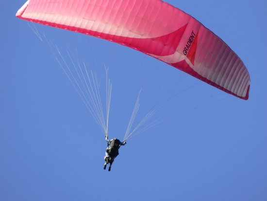 Parafly Paragliding: Great Day to Paraglide