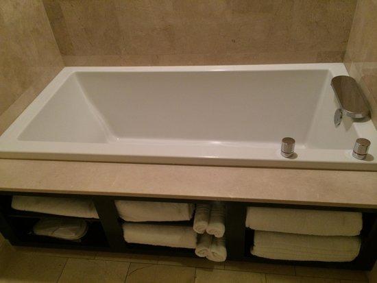 MotorCity Casino Hotel: Bath area