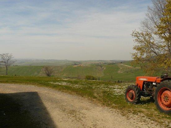 Azienda Agricola Barbi: Panorama dalla casa