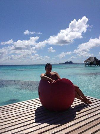 Sofitel Bora Bora Private Island: Звездный отдых !