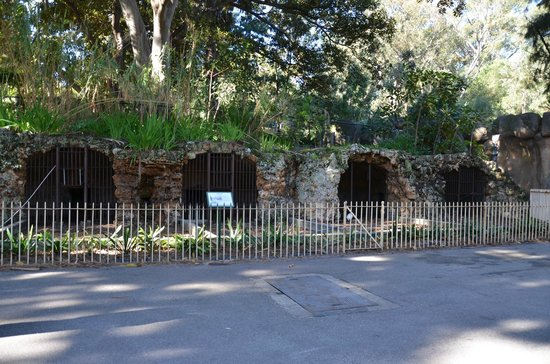 Perth Zoo : The specimen of old cage when the zoo was open ages ago..as an exhibit to compare with current s