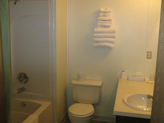 Pleasant Acres Motel: guest bathroom