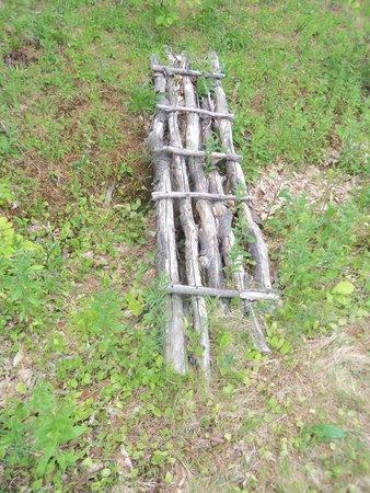 Gunstock Mountain Resort : Cool man made bridge