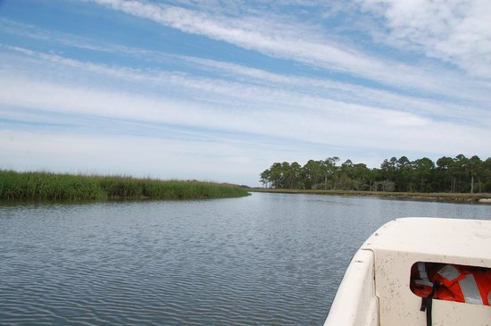 Wadmalaw Island, SC: Scenic views