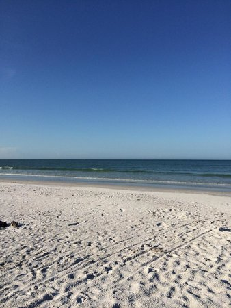 Sea Spray Resort on Siesta Key: The beach near the hotel