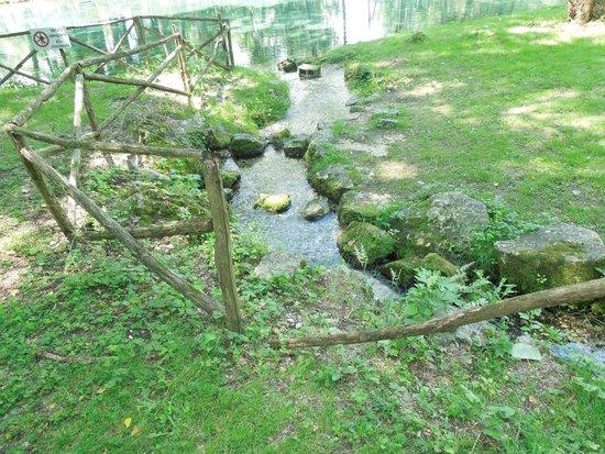 Parco del Grassano: bellissimo