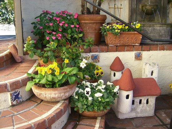 Casa Laguna Hotel & Spa: Petit coin jardin