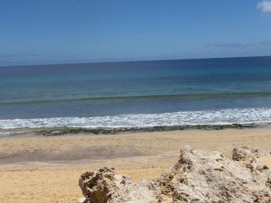 Vila Baleira Porto Santo: A magnífica praia