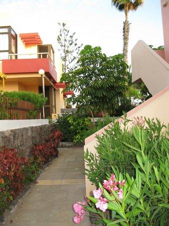 Paraiso del Sol Apartments : Территория отеля.