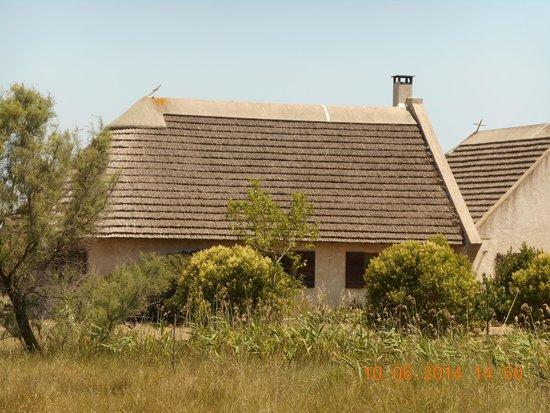 Camargue autrement safari 4x4 : cabane d'habitation du gardian