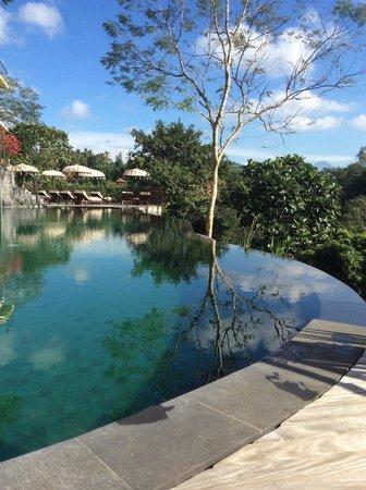 Komaneka at Bisma: Pool at Komaneka Tanggayuda