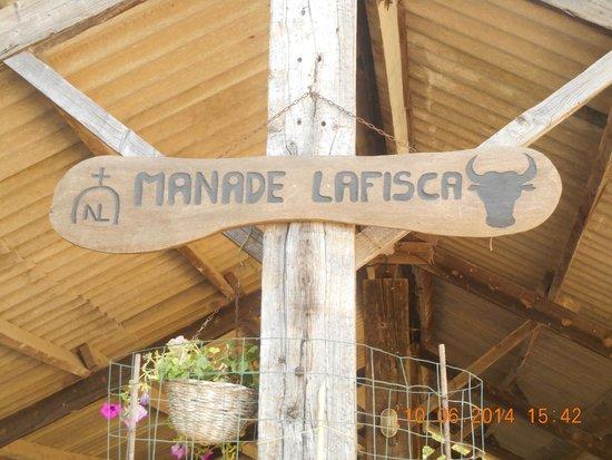 Camargue autrement safari 4x4 : Les emblèmes de la manade LAFISCA