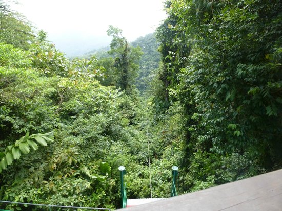Costa Rica Sky Adventures - Arenal Park: Cable Through the Trees