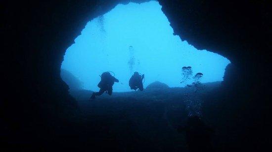 Evelin Divers: Un des sites de plongée (cave de l'éléphant)