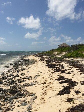 Wyndham Reef Resort : Property next to the hotel - nice walk!
