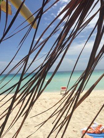 Hotel Colonial Cayo Coco : Magnifique plage
