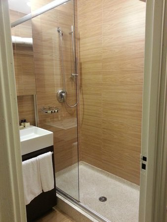 Empire Hotel: Attractive but not very functional shower.