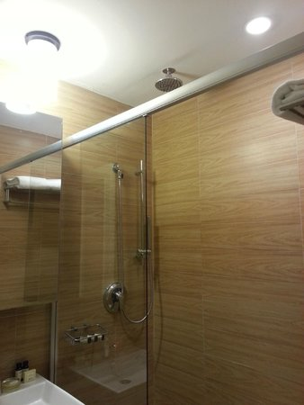 Empire Hotel: Fancy but not very functional shower.