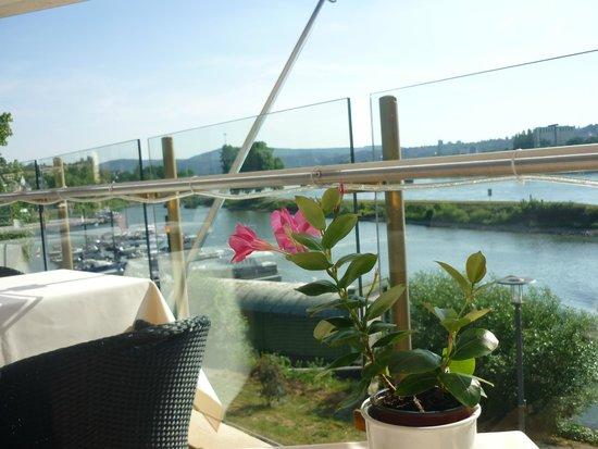 Diehls Hotel: Blick zum Rhein