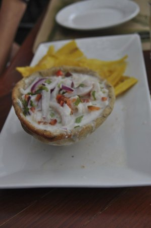 Finca Rosa Blanca Coffee Plantation Resort: Ceviche (the only time coconut milk was used while in central america)