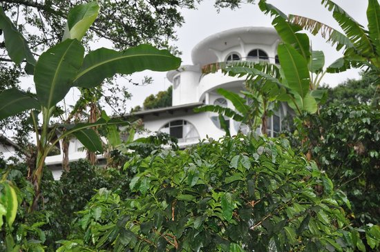 Finca Rosa Blanca Coffee Plantation Resort: view of the main building from the garden
