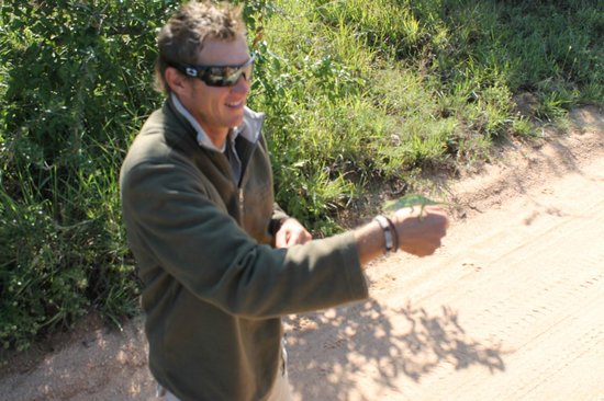Nkorho Bush Lodge: Ranger Cedric and chameleon