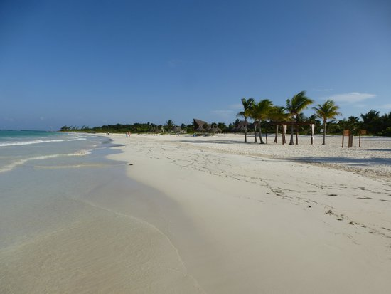 Secrets Maroma Beach Riviera Cancun: Gorgeous beach