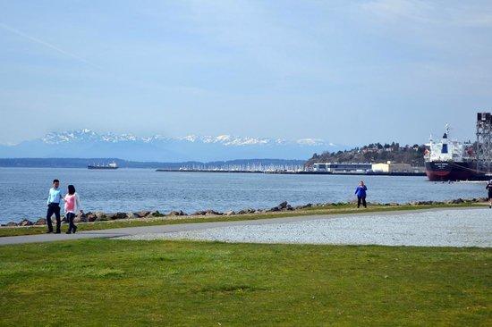 Myrtle Edwards Park: Olympic Moutains, Magnolia and the Elliott Bay Marina