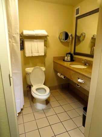 Holiday Inn Express Castro Valley - East Bay: Bathroom