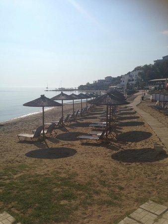 Caravel Hotel Zante: The beach