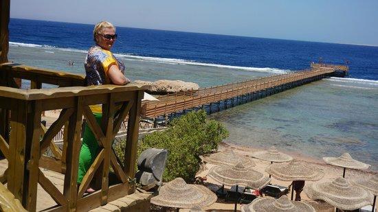 Rehana Sharm Resort: Море)))