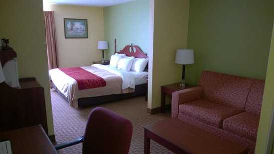 Comfort Inn & Suites Dayton: King Suite Guest Room