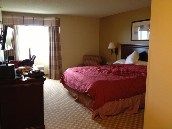Country Inn & Suites By Carlson, Lincoln North Hotel and Conference Center: King