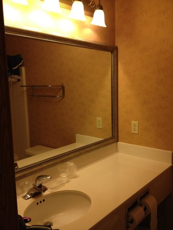 Country Inn & Suites By Carlson, Lincoln North Hotel and Conference Center: Vanity